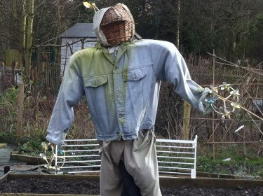 Allotment blog humour - Harry the scarecrow