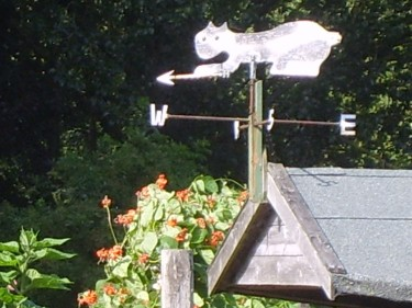 Weather vane pointing out our prevailing Yorkshire wind