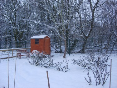 Winter hits our Yorkshire allotment