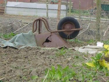Allotment humour: decrepit wheelbarrow