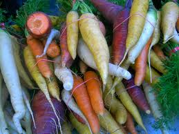 rainbow carrot pic for allotment blog
